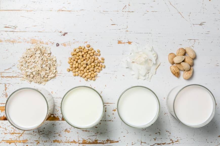 Milk Alternatives Explained