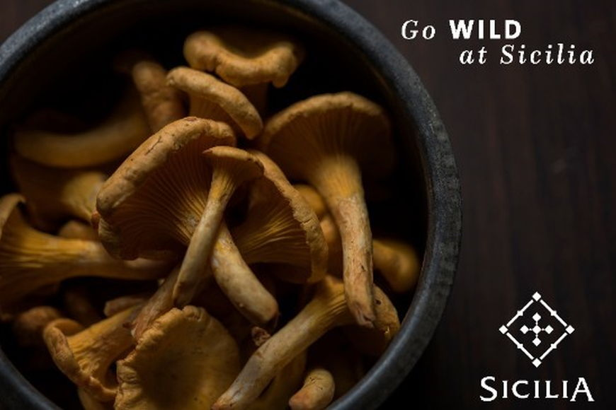 "Savour The Flavours Of The ""Wild Mushroom"""