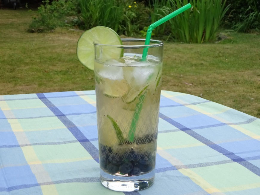 Ginger, Lime and Blueberry Mocktail