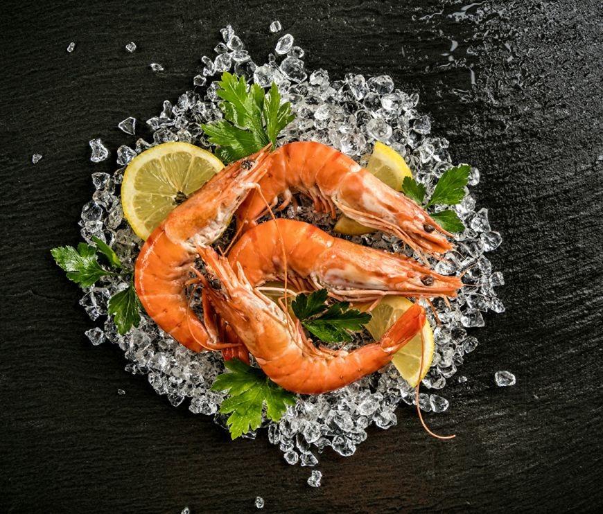 Seafood_0