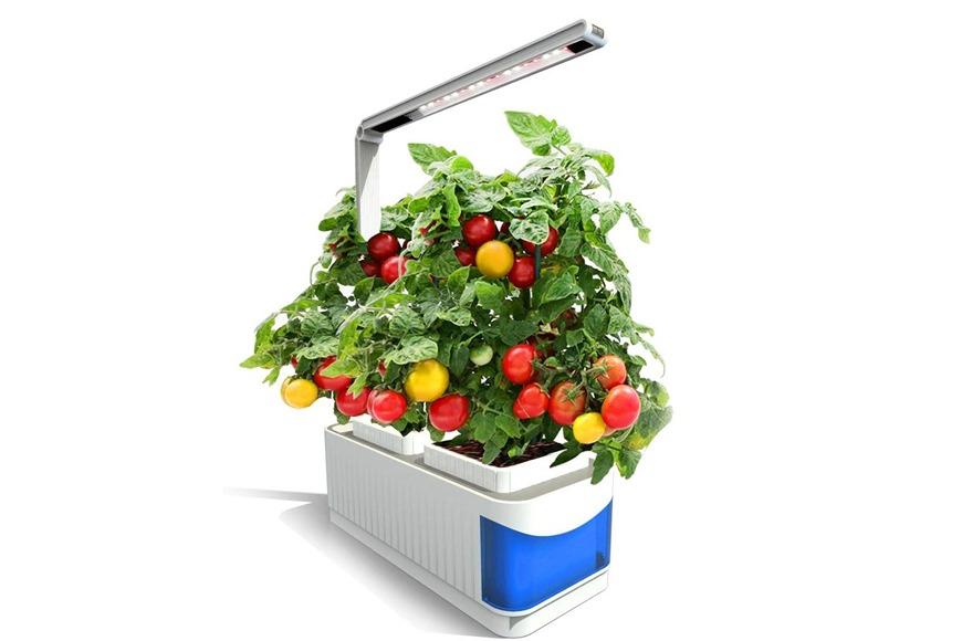 Smart Indoor Herb and Plant Garden