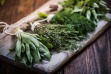 How to Make 5 Easily Homegrown Herbs Last Beyond Summer