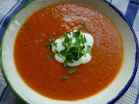 Spicy Tomato, Lentil and Vegetable Soup