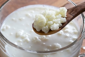 Where to find kefir in Dubai