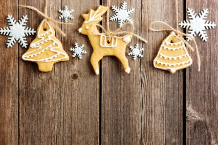Xmas Gingerbread Biscuits