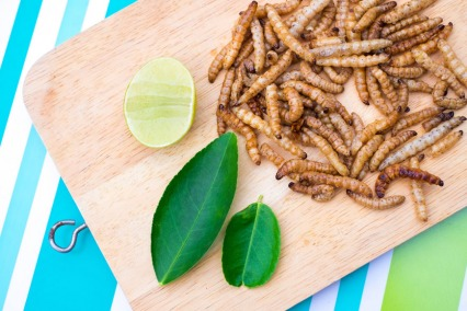 This is How Insects are Eaten Around the World